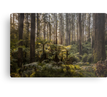Sherbrooke Forest Metal Print