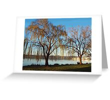 Willows along the Potomac River Greeting Card