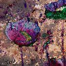 Poppy by Rick Dunstan