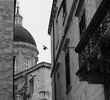 Birds by nataliemack