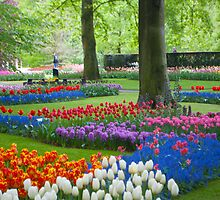 Keukenhof Gardens by Cathy Jones