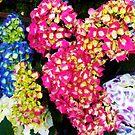 1529-multicolor flowers by elvira1