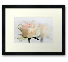 Mature Beauty... Framed Print