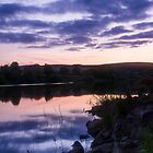 Reflections on Damflask by Angie Morton