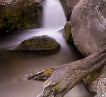 Burbage Brook by Angie Morton