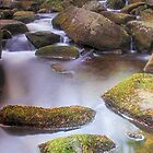 Burbage Brook at Padley Gorge by Angie Morton