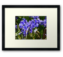To Fly Butterly Framed Print