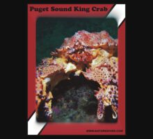 Puget Sound King Crab Shirts by naturediver