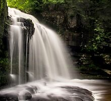 West Burton Falls by Theresa Elvin