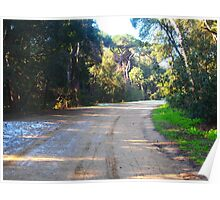Road in the reserve in winter Poster