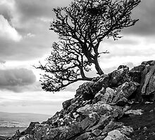 Reach for the Sky, Ingleborough, Yorkshire Dales National Park by strangelight