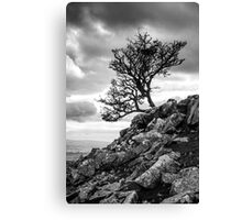 Reach for the Sky, Ingleborough, Yorkshire Dales National Park Canvas Print