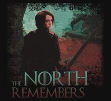 The North Remembers ( Arya Stark ) by lab80