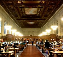 New York Public Library by shawnpau