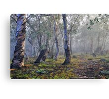 A Foggy Morning Canvas Print