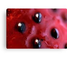 Strawberry Seeds Canvas Print