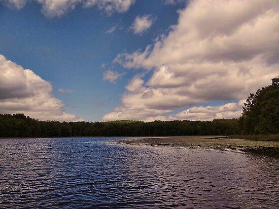 Cruising on the lake by vigor