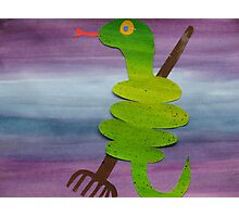 Snake with a Rake- animal rhymes from recycled math books Photographic Print