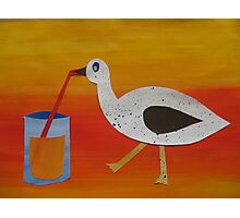 Goose with Juice- rhymes made from recycled math books Photographic Print