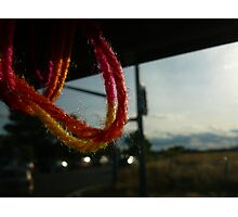 Yarn in Sacramento Photographic Print