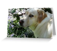 ~ Just Smelling the Bluebells Mum ~ Greeting Card