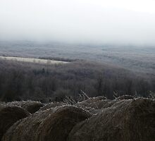 Icy Hay Bales in Winter West Virginia by Chad Burrall