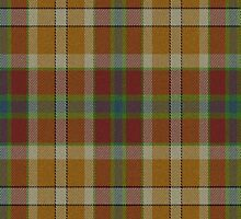 02595 Cameron County, Texas E-fficial Fashion Tartan Fabric Print Iphone Casde by Detnecs2013
