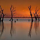 sunset by Hannasky Photography