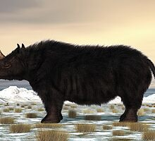Woolly Rhinoceros by Walter Colvin
