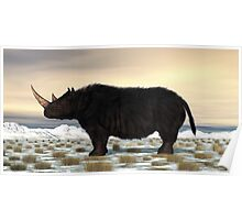 Woolly Rhinoceros Poster