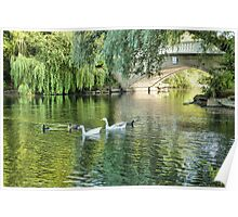 Stanley Park Boating Lake. Poster