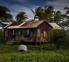 Fijian Rustic Homestead by Mandy  Harvey