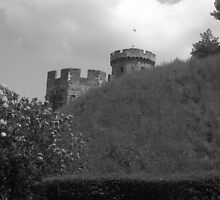 March on Warwick Castle by FairyGirl15