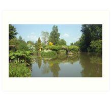 River Avon Art Print