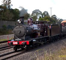 Steam Loco 3265 -Maitland NSW Australia by SNPenfold