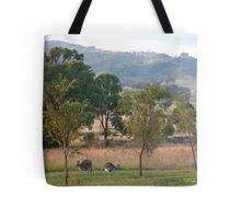 Kangaroos and their Joey -Vacy, NSW Australia Tote Bag