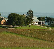 Joe Mortelliti Gallery - Spray Farm homestead, Bellarine Peninsula, Victoria, Australia. by thisisaustralia
