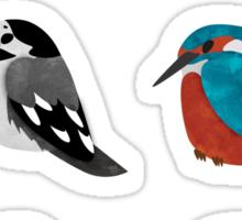 Beautifully Designed Bird Breed Images Sticker