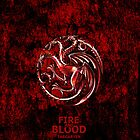 Game Of Thrones Targaryen Fire and Blood by neutrone