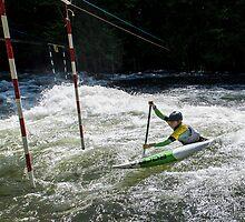 Battling the River by faczen