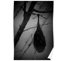 Bat Hangin' from a Tree-Spooky Poster