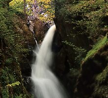 Aira Falls, Lake District, England by Steve