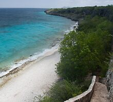 1,000 steps in Bonaire by Ralph Goldsmith