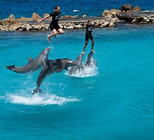 Dolphin powered flight by Ralph Goldsmith