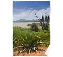 Goto Lake in Bonaire Poster