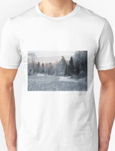 Winter Came T-Shirt
