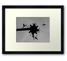 Hummingbirds #4 Framed Print