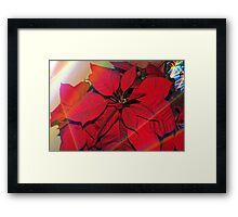 Poinsettias by stained glass windows Framed Print