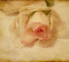 Vintage Rose  by Sandra Foster