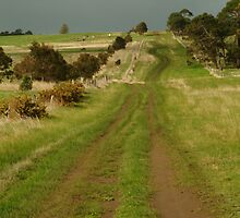 Joe Mortelliti Gallery - Heavy cloud over Spray Farm, Bellarine Peninsula, Victoria, Australia.  by thisisaustralia